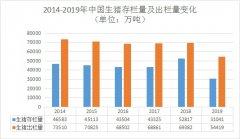 2019年生猪养殖行业数据信息