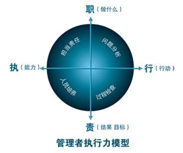 主要组织结构