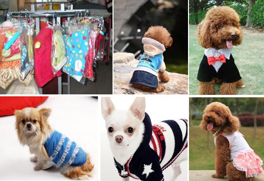 宠物服装项目可行性研究