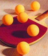 乒乓球设备项目商业计划